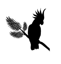Silhouette cockatoo sitting on palm branch vector