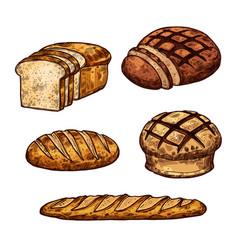 Sketch bread color icons of bakery shop vector