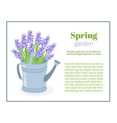 Spring garden flower brochure design backgrounds vector