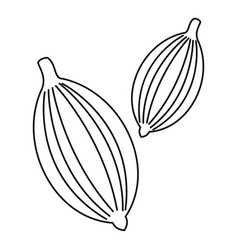 cardamom icon outline style vector image