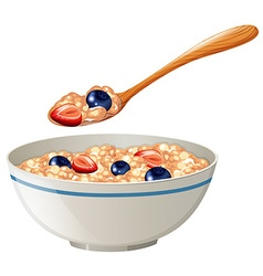 Oatmeal with berries in the bowl vector image