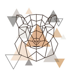 abstract geometric head of grizzly wild animal vector image