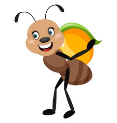 Ant with peach on white background vector