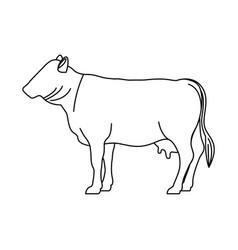 Beet livestock animal design vector