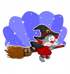 cat on the broom vector image