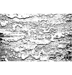 distressed cracked paint overlay texture vector image