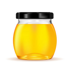 Honey in glass jar vector