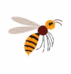 Hornet insect isolated vector