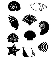 set shells vector image