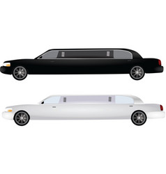 Two limos vector