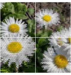 White flowers on the grass Collection of abstract vector image