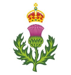badge of scotland vector image vector image