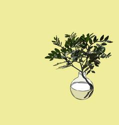 indoor plant in glass vase hand draw vector image