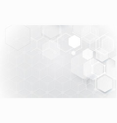 Abstract white geometric hexagons shape and lines vector