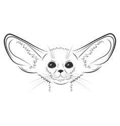 Fennec fox hand drawn vector