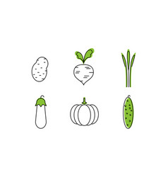fresh vegetables line icons set potato beet vector image