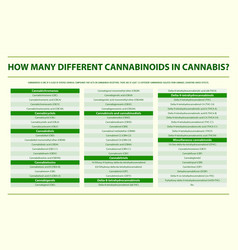 How many different cannabinoids in cannabis vector