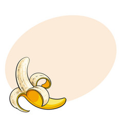 one open peeled ripe banana sketch style vector image
