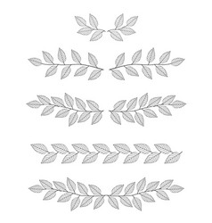 Set of branches dividers vector