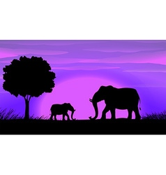 Silhouette Elephants vector image