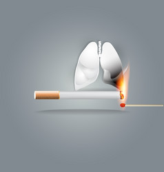 smoking burns your lung vector image