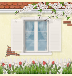 Spring old facade wooden window branch tulips vector