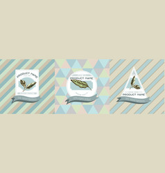 three colored labels with calathea vector image
