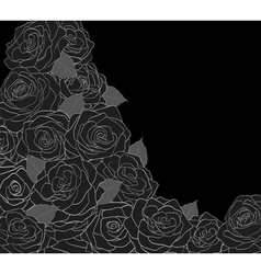 Outline of roses on a black background vector image vector image