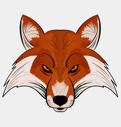 mascot fox head cartoon style vector image