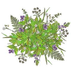 Botanic15 vector image