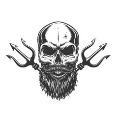 bearded and mustached skull vector image