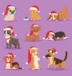 christmas dog cute cartoon puppy characters vector image