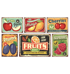fruit market vintage signs collection vector image
