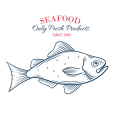 Hand drawn fish icon vector