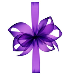 Purple bow and ribbon top view on white background vector