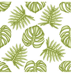 Seamless pattern with hand drawn pastel monstera vector