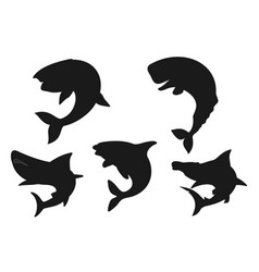 whale shark and orca animal black silhouettes vector image