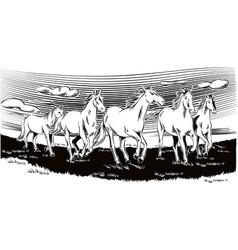 White horses running free vector