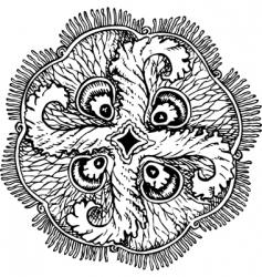 Aurelia insulinda jelly fish vector image