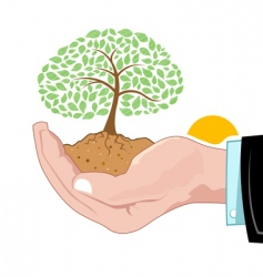 natural tree growing on hand vector image