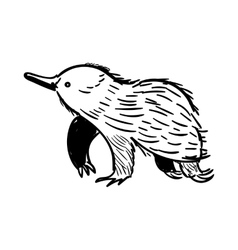 Australian animal Echidna in doodle style vector image