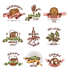 beer colored hand drawn emblems vector image