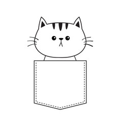 cat in the pocket doodle contour linear sketch vector image