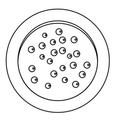 heap of pepper peppercorns on a plate icon vector image