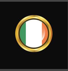 ireland flag golden button vector image
