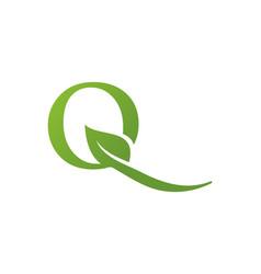 letter q leaf nature logo vector image