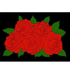Red roses with green leaves close-up vector image