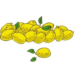 Ripe Fresh Yellow Lemons vector image