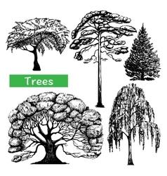 Trees hand drawn black icons set vector image vector image