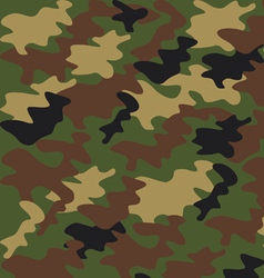 military camouflage pattern vector image vector image